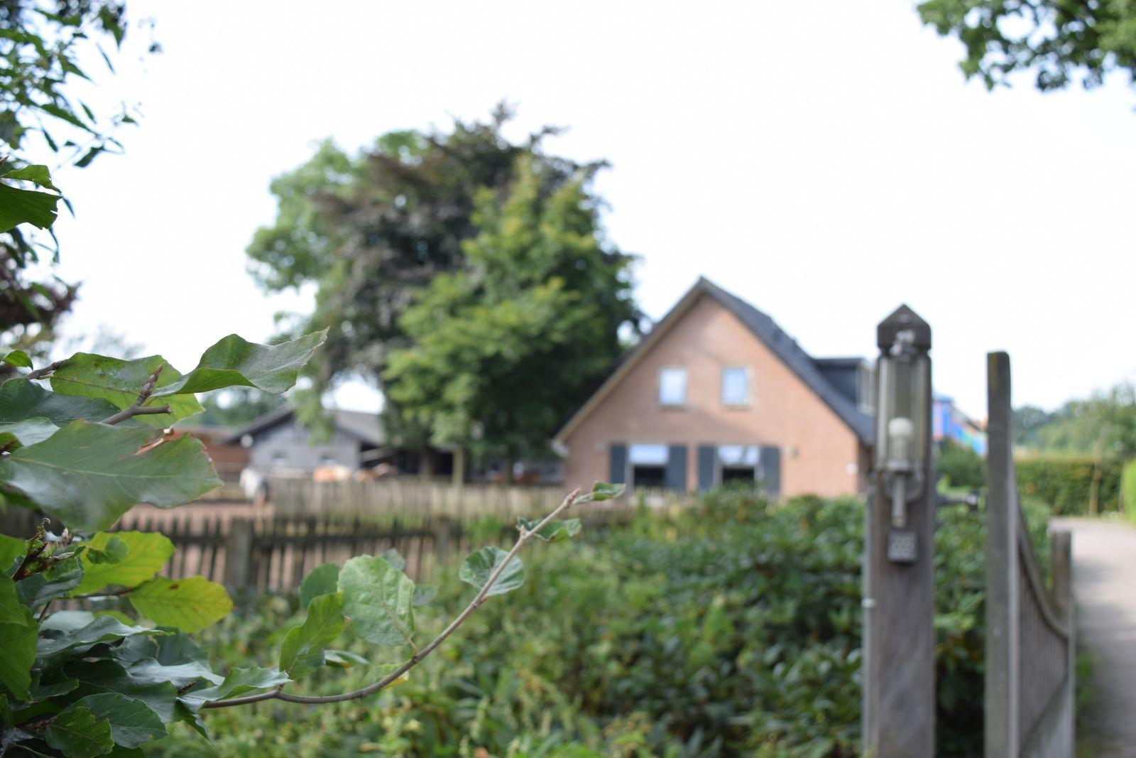 20-persoons Groepsboerderij - de Boshoek