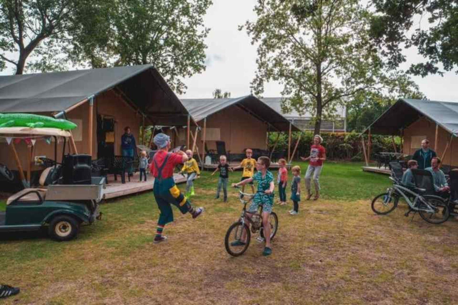 Basic safaritent - Camping 't Veld